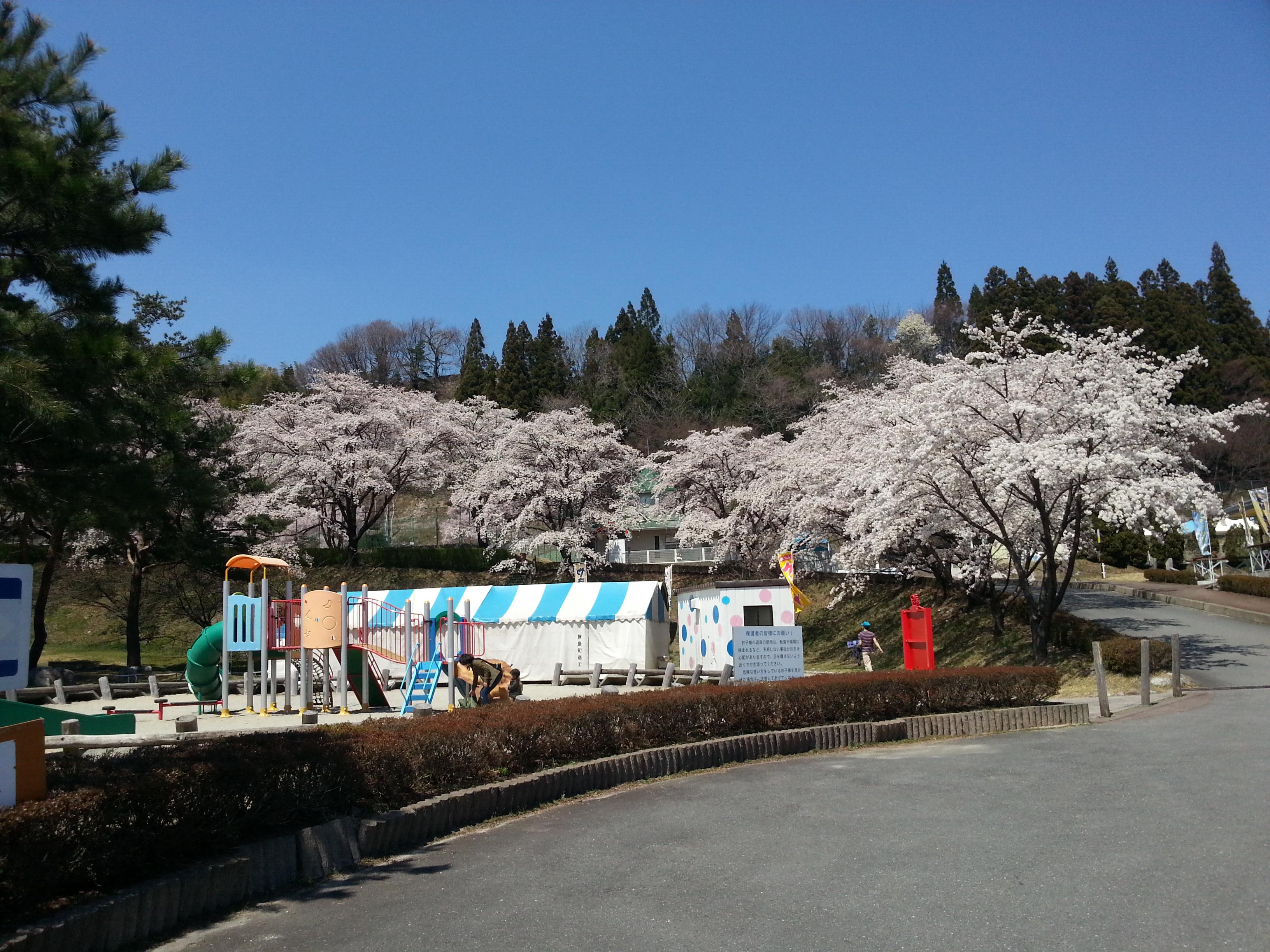 与田切公園2 2014.4.14.jpg