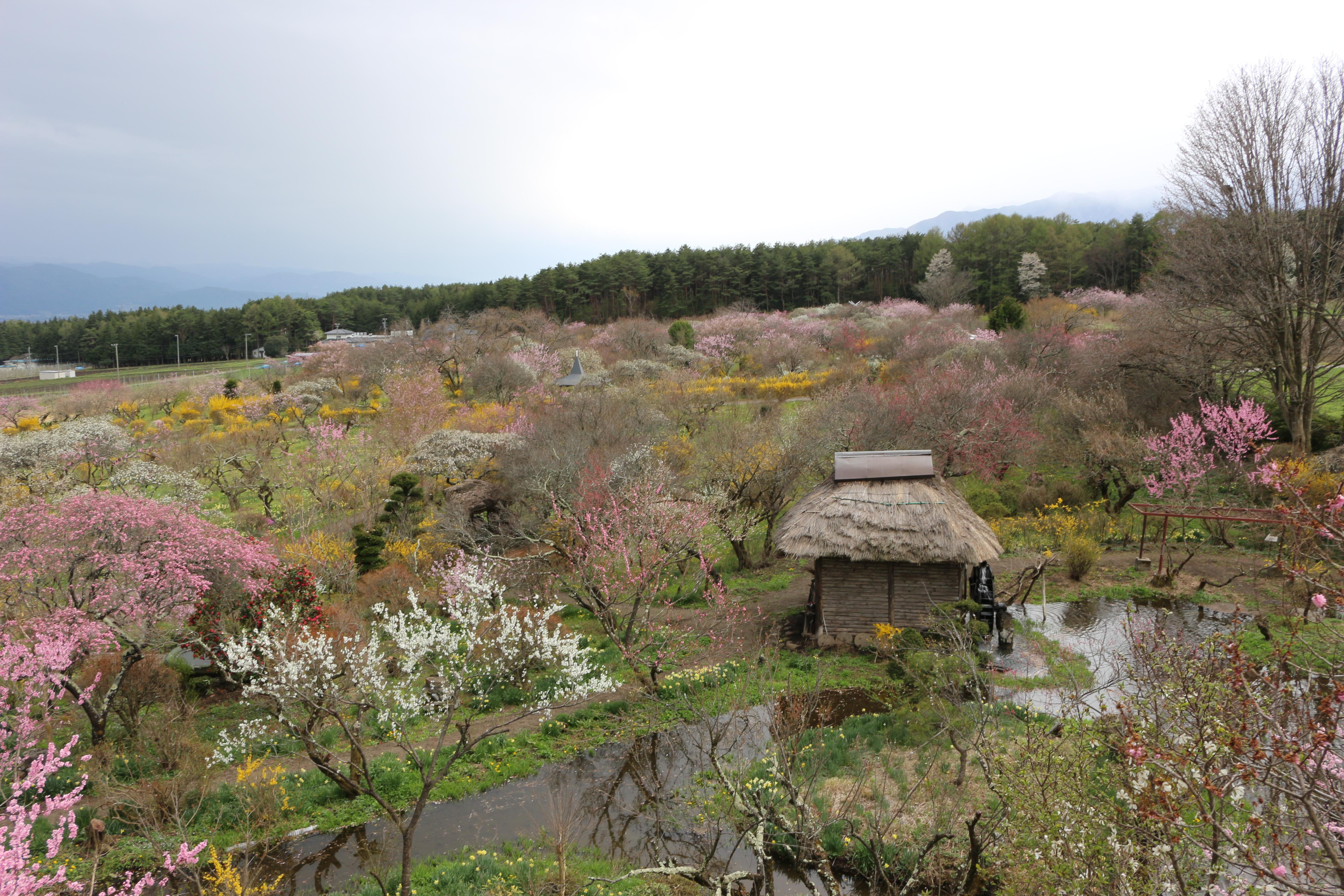http://www.komagane-linx.co.jp/IMG_3568.JPG