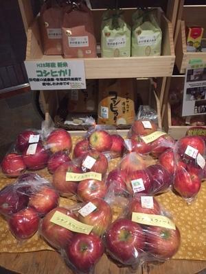 秋の味覚りんご大好評販売中!!画像その1