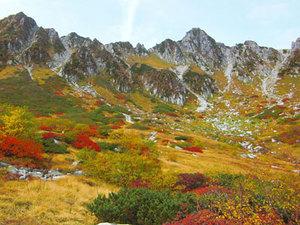 【秋のリンクス!】ネイチャーガイドプラン♪画像その3