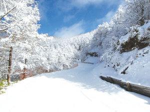 【リフト券2日分付】1泊2日のスキー満喫「泊まろうトゥモロー」プラン♪画像その3