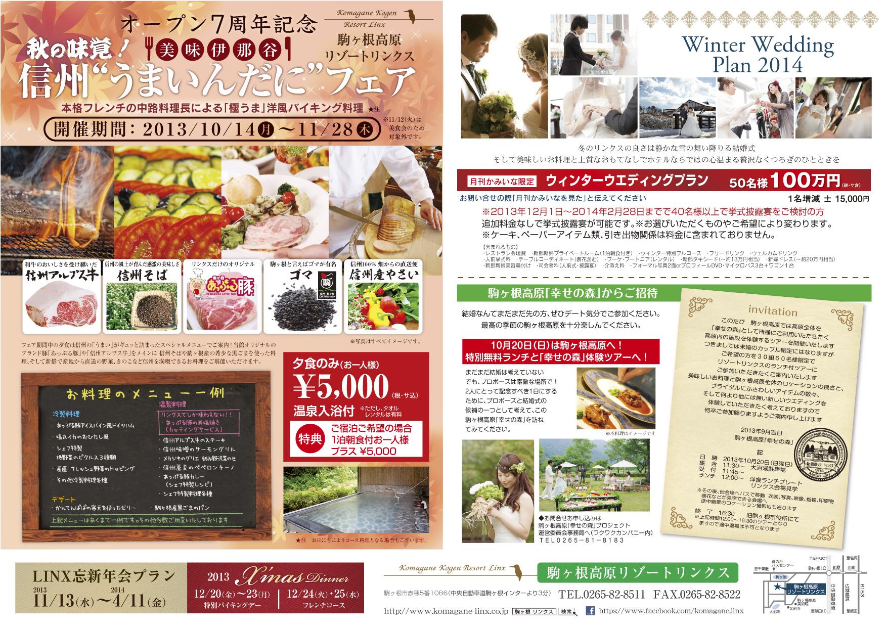 http://www.komagane-linx.co.jp/blogimages/hotel_20130926_kamiina02.jpg