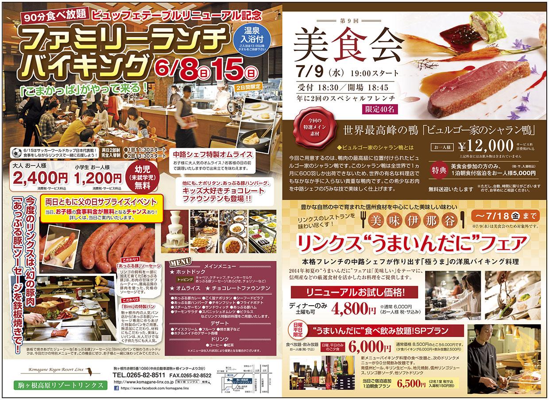http://www.komagane-linx.co.jp/blogimages/hotel_20140528_kamiina.jpg