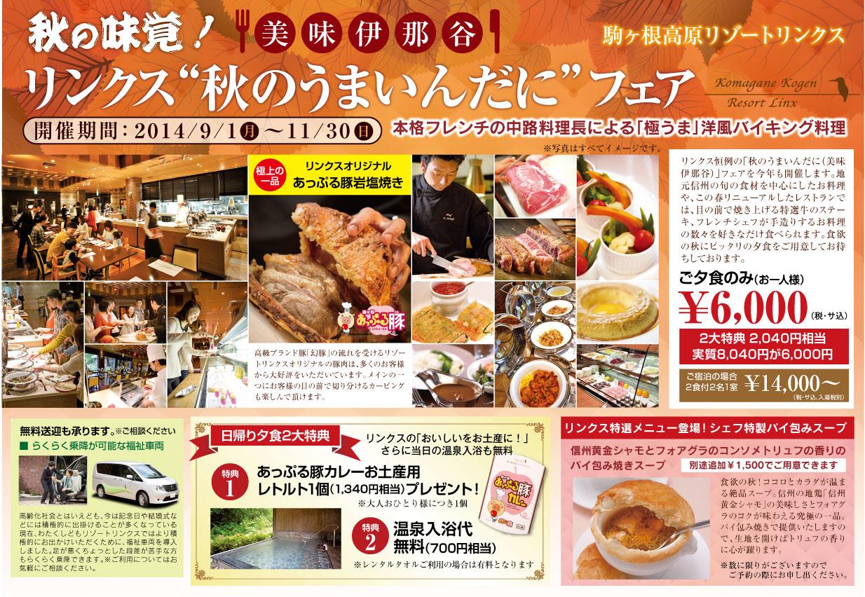 http://www.komagane-linx.co.jp/blogimages/kamiina201409-1.jpg
