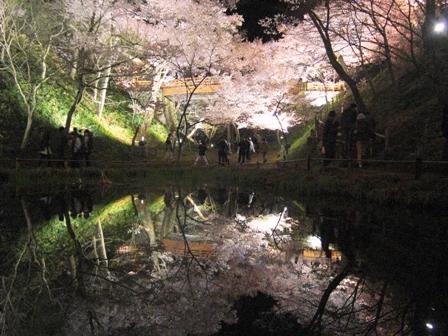 100412高遠夜桜 010.jpg